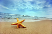 Une plage propre