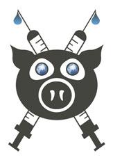 La grippe porcine